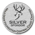 SilverSponsorCoin